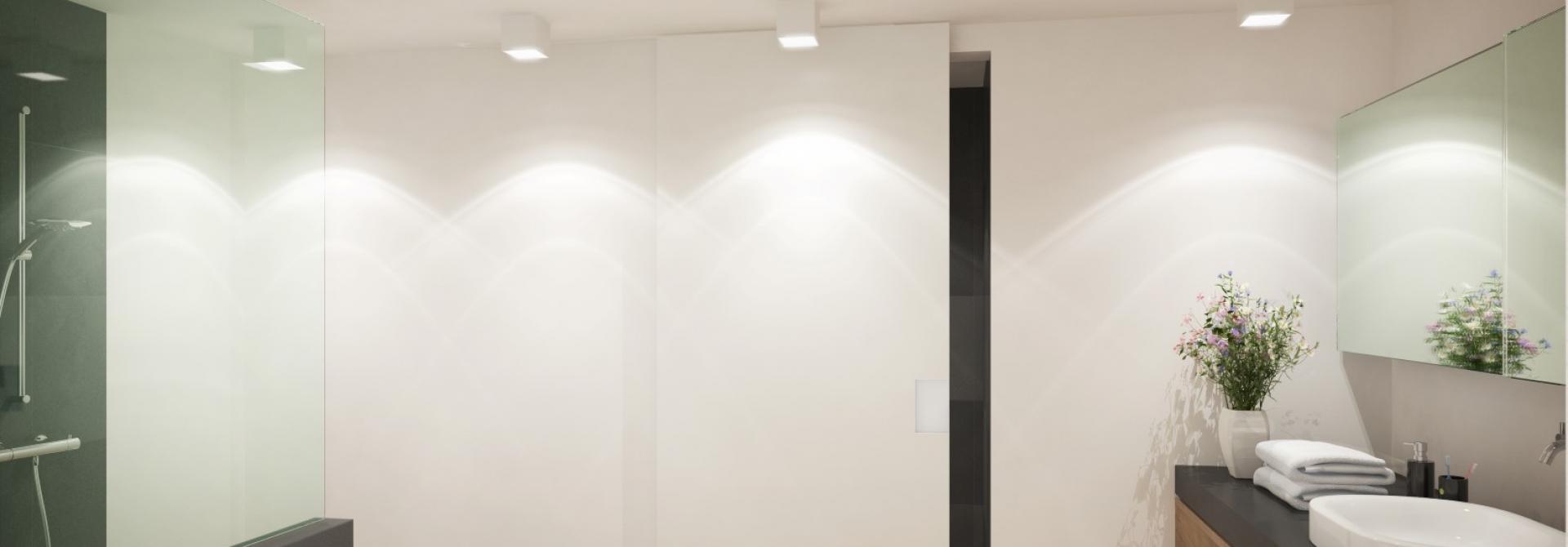 Boerderij foto – 15  badkamer beneden voor visual